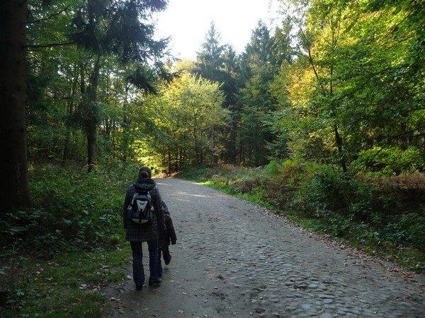 Wandern im Herbst in der Granitz