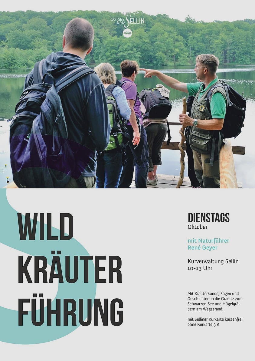Wildkräuterführung Sellin Oktober 2020