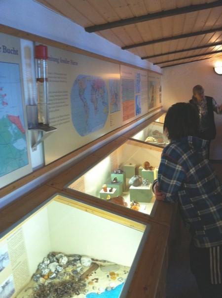 Bersteinmuseum in Sellin - Ausstellungsräumlichkeiten