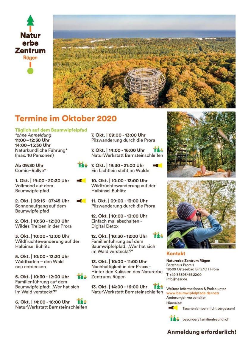 Naturerbezentrum Oktober 2020