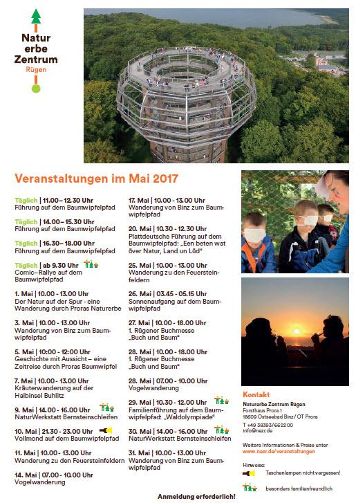 Baumwipfelpfad Prora Mai 2017
