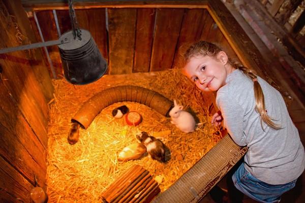Kinderbauernhof Erlebnis-Dorf Zirkow
