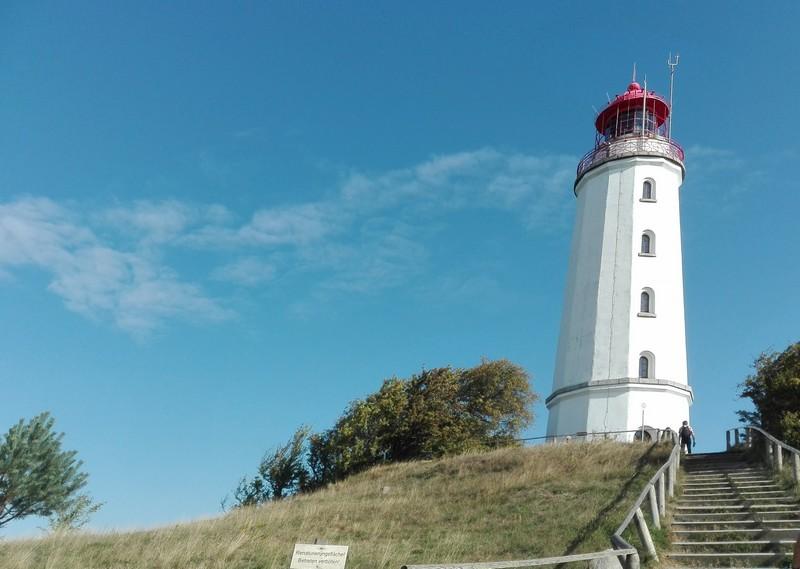 Leuchtturm-Dornbusch