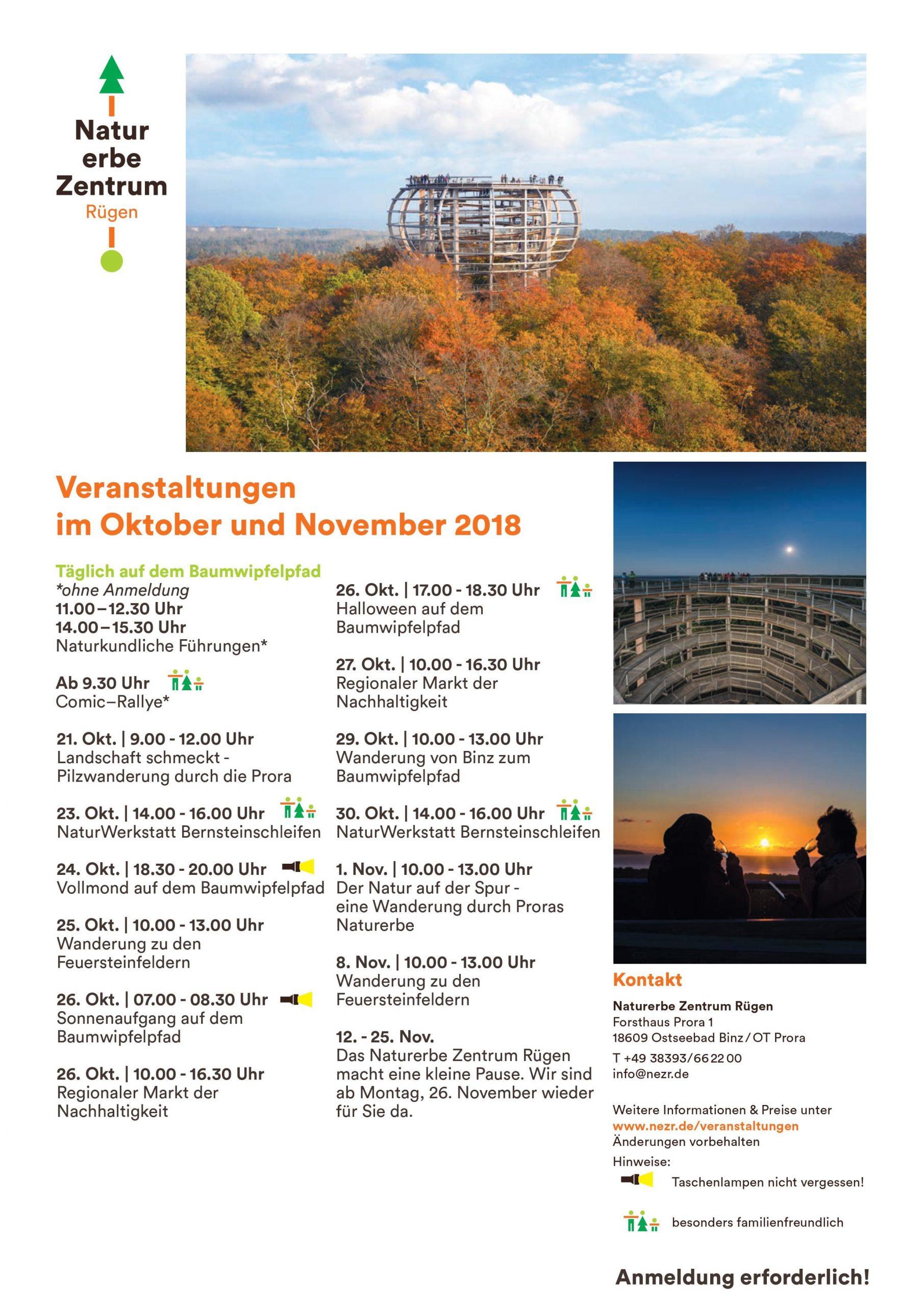 Oktober November 2018 Baumwipfelpfad