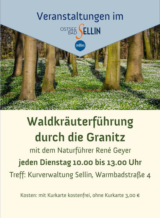 Waldkräuterführung Granitz